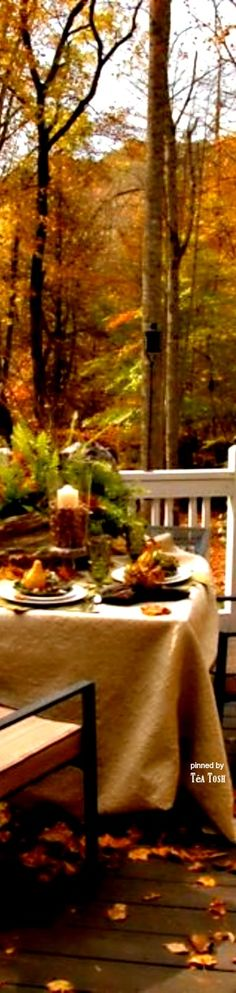 What a gorgeous Autumn moment and I love the beautiful meal setting outside!