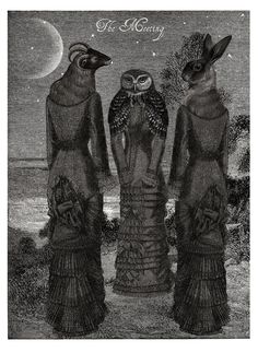 Anouk de Groot - Occult Collage 'The Meeting' by Morphauna Three hybrid Witches meet under a crescent moon. Made using antique engravings and illustration