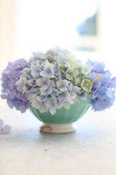 わざわざ花瓶を買わなくっても大丈夫!お気に入りの器に紫陽花を飾ってみるのも素敵。器に合わせて紫陽花の茎を短めに切って低めに飾って、テーブルに置けば食卓を彩ってくれます。