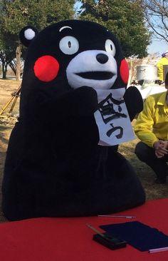 くまモン kumamon the real japan, real japan, japan, japanese, cartoon, character, anime, animation, mascot, chara, sanrio, yuruchara, kumamon, hikonyan, tour, travel, explore, trip, adventure, gifts, merchandise, toys, dolls http://www.therealjapan.com/subscribe/