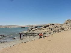 shark+island+-+beach.JPG 1,000×749 pixels