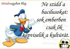 . Donald Duck, Disney Characters, Fictional Characters, Lol, Funny, Paleo, Funny Parenting, Beach Wrap, Fantasy Characters
