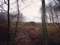 #naturelovers #mist #wood #forest #walking #together #famillytrip #klubkocestuje První sváteční den jsme strávili s maminkou štrádováním k Helfštýnu, který jsme nezvládli dobýt!❄️♀️☁️
