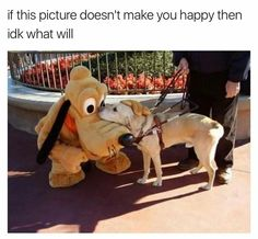 Service Dog meets Pluto his or her idol!!