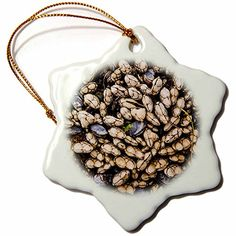 Danita Delimont  Marine life  California Santa Barbara Hendrys Beach mussels and barnacles  3 inch Snowflake Porcelain Ornament orn_229818_1 >>> Read more  at the image link.