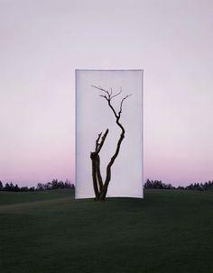 Nature Framed By Myoung Ho Lee