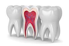 Neil J Small - Fairfax - Dentists - 1 Ratings Dental Costs, Oral Maxillofacial, Free Dental, Dental Insurance, Oral Surgery, Adobe, Dentist In, Blood Vessels, Teeth