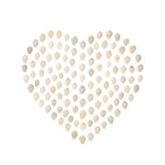 White shell heart