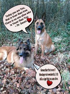 Happy Monday :) Have a fantastic Week. :)  www.facebook.com/cash.von.badeleben