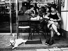Tatsuo SUZUKI :: Cafe, Shibuya, Tokyo, 2013 [details :: the dog and the foot]