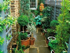 This very narrow space on the side of a townhouse is made more interesting by using an interesting paving pattern with tiles and pea gravel, plus a variety of plants in pots.