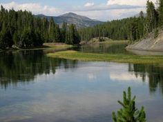 Guided Tours in Yellowstone National Park~ we enjoy the 70 mile trip by car, following a guided map, which leaves lots of time for picnics and hikes along the way. I miss Yellowstone Park!