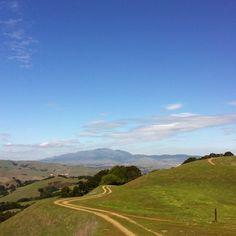 Pleasanton Ridge in California. View of Mt. Diablo |
