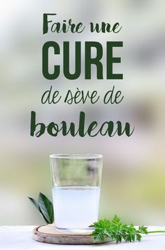Make a birch sap cure in the spring Holistic Remedies, Health Remedies, Healthy Drinks, Healthy Tips, Healthy Recipes, Health And Nutrition, Health And Wellness, Natural Cosmetics, Natural Cures