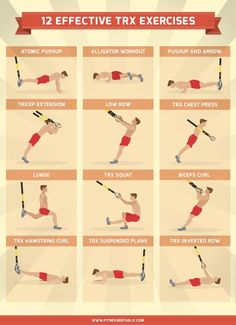 Trx exercises trx all body workout fitness pinterest trx 12 effective trx exercises for a full body workout fandeluxe Images