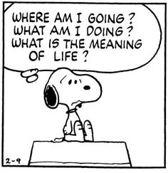I feel like I'm in a permanent state of existential crisis and the angst accompanying it is really starting to get to me. Existential Therapy, Existential Crisis, Peanuts Quotes, Snoopy Quotes, Cartoon Quotes, Midlife Crisis, What Is Meant, Meant To Be, Charlie Brown