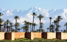 Morocco luxury holidays with Cox & Kings uncover a land of cultural and scenic diversity, from the bustling souks of Marrakech to the stunning Atlas Mountains. Le Riad, Riad Marrakech, Destinations, Desert Tour, South American Countries, Morocco Travel, Le Palais, Atlas Mountains, Varanasi