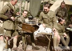British tank officers relaxing around a gramophone player with their pet dogs, in their camp at La Lovie, a town north of Poperinge, Belgium. 26 September 1917.  l-r: Major Richard Cooper, (seated) Captain Wilfred Wyatt, Lieutenant Gerald Edwards, Second Lieutenant Gerald Butler and (seated) Lieutenant Edward Sartin. (They all survived the war)  more here - http://www.dailymail.co.uk/news/article-3824281/British-soldiers-survived-Ypres-happened-went-home.html  (Photo source - © IWM Q 2897)