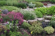 Boulders may be scattered over a gentle slope, whereas on a steeper slope the stones must be placed close together, at some points even resting on one another. Even rock walls may be part of a rock garden.