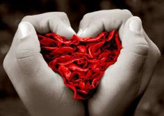 Your Heart In Your Hands