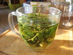 Přírodní léčba - čaj na bolest hlavy Herbalism, Cabbage, Vegetables, Cooking, Health, Tips, Food, Witch, Gardening
