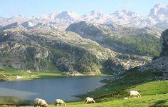 Parque Nacional de Picos de Europa (Asturias_España_el país más bonito del mundo)