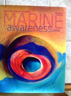 Bec's August Get Savvy pin - learning about marine awareness and actions she can make to help take care of the oceans. #GS2013