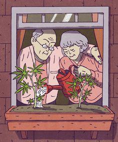 Vermont's D I Y Approach on Marijuana The New York Times is part of Marijuana art - Weed Memes, Weed Humor, Arte Dope, Dope Art, Psychedelic Art, Arte Bob Marley, Rauch Fotografie, Arte Do Hip Hop, Marijuana Art