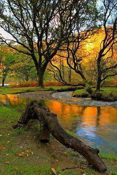 Autumn Reflection, Wicklow, Ireland