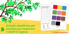 Colori in Inglese per Bambini: Schede Didattiche da Stampare