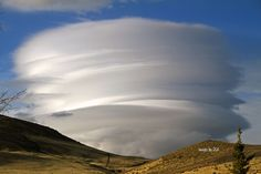 Lenticular clouds, Reno NV. Photo by Catilac on Weather Underground.