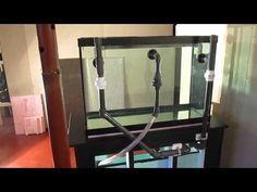 Aqueon® 65 Gallon Aquarium Ensemble Aquariums PetSmart
