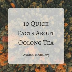 10 Quick Facts About Oolong Tea - Avalon Media - A LifeStyle Blog  #tea #quickfacts #SNRTG