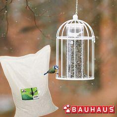 Osale BAUHAUSi talvises auhinnamängus!