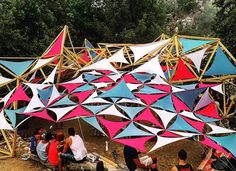 Daytime stage forest frequencies 2015