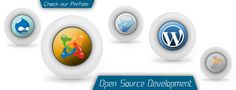 CMS Web Development, CMS with php, Java or .net.