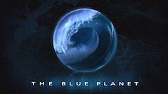 i LOVE the blue planet documentaries! Netflix Series, Tv Series, Bbc Blue Planet, David Attenborough, Title Card, Great Tv Shows, Kid Movies, Yesterday And Today, Holidays With Kids