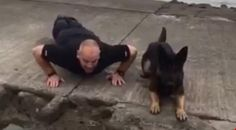 This video of Monty the adorable police dog doing push-ups for charity will make your day.