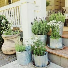 In this picture, tins have been recycled to make the plant pots. You can color these pots as well, color them in green or blue so that they can provide peace to the eyes. Place a lot of pots to make the garden look like a place that can make people feel best when they enter.