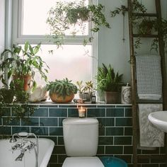 Green tile is a beautiful way to bring the colors of the outdoors into your home. For a look like this just chose Venetian Green subway tile and add plants :)