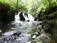 Clare Glens Waterfalls Clare Glens, Liscreagh Co. Emerald Isle, Holy Land, Waterfalls, Castles, Countryside, Ireland, City, Places, Outdoor