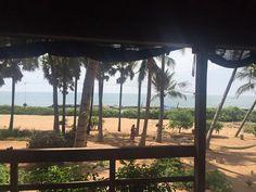 Samarpan Guesthouse Union Territory, Pondicherry, Hotel Reviews, Trip Advisor, India, Beach, Photos, Goa India, Pictures