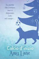 """Recensione """"Calcio d'inizio"""" (Serie Fuori del campo #1) di Amy Lane, edito da Dreamspinner Press"""