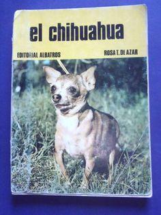 CHIHUAHUA PERRO DOG CRIA ADIESTRAMIENTO ENFERMEDADES BREEDING TRAINING SPANISH