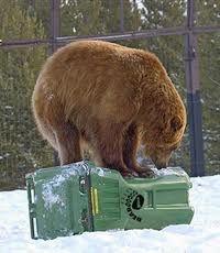 Tips for Avoiding Bear Attacks -Posted on January 27, 2014