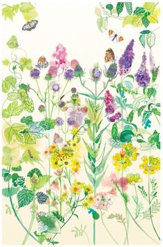 wild flowers illustration sketch