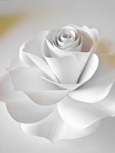 Giant White Paper Rose White Paper Flower Spring By Thepurpledream