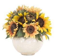 YG | Sunflower