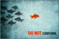 gegen der Strom schwimmendie Wahrheit Jesus ist Kraft und Stärke es zu schaffen !