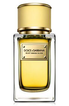 New Dolce Gabbana Beauty Velvet Ginestra Eau de Parfum. beauty makeup perfume from top store Perfume Versace, Perfume Zara, Perfume Scents, Best Perfume, New Fragrances, Perfume Bottles, Dolce And Gabbana Fragrance, Make Up, Men's Cologne